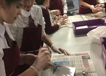 Year 8 Biology Masterclass