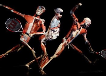 Health & Fitness Student Trip to Body Worlds Exhibition