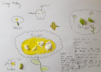 Amazing Science Taster Lesson work from our incoming Year 6 students